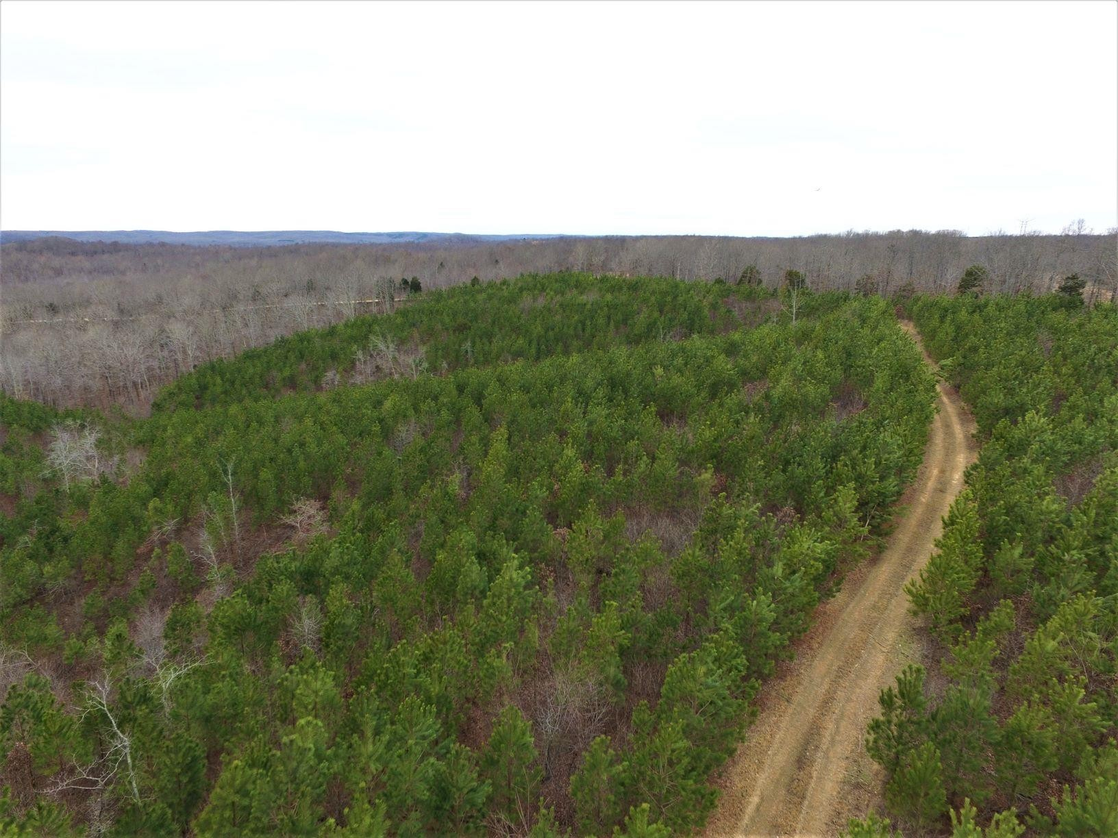 0 Dogwood Rd Property Photo - Hurricane Mills, TN real estate listing