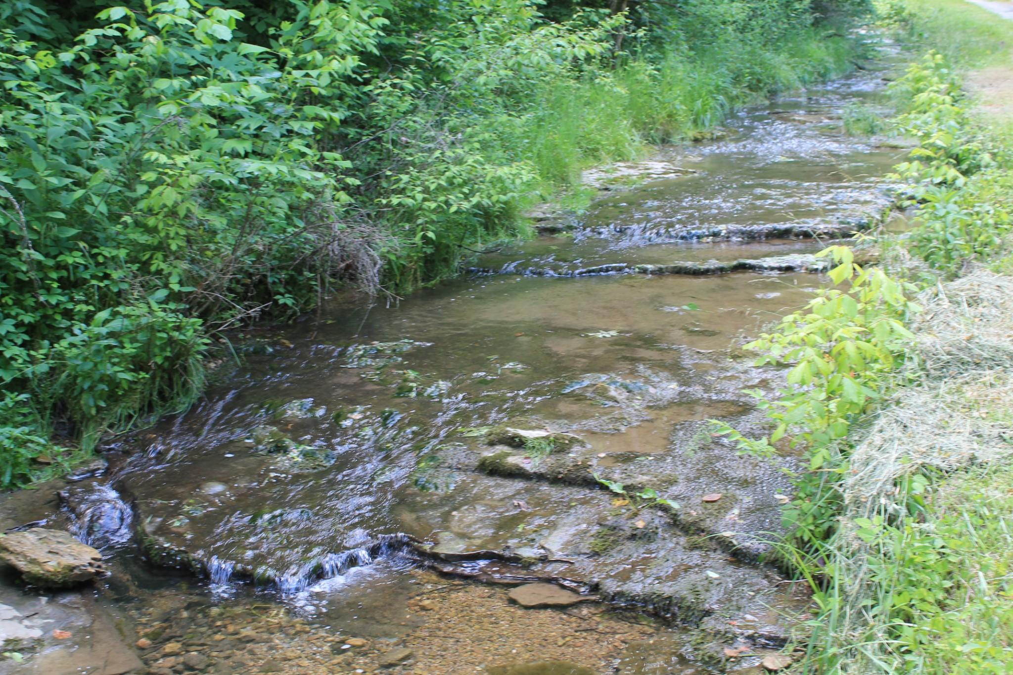 0 Hensley Creek Lane Property Photo - Whitleyville, TN real estate listing