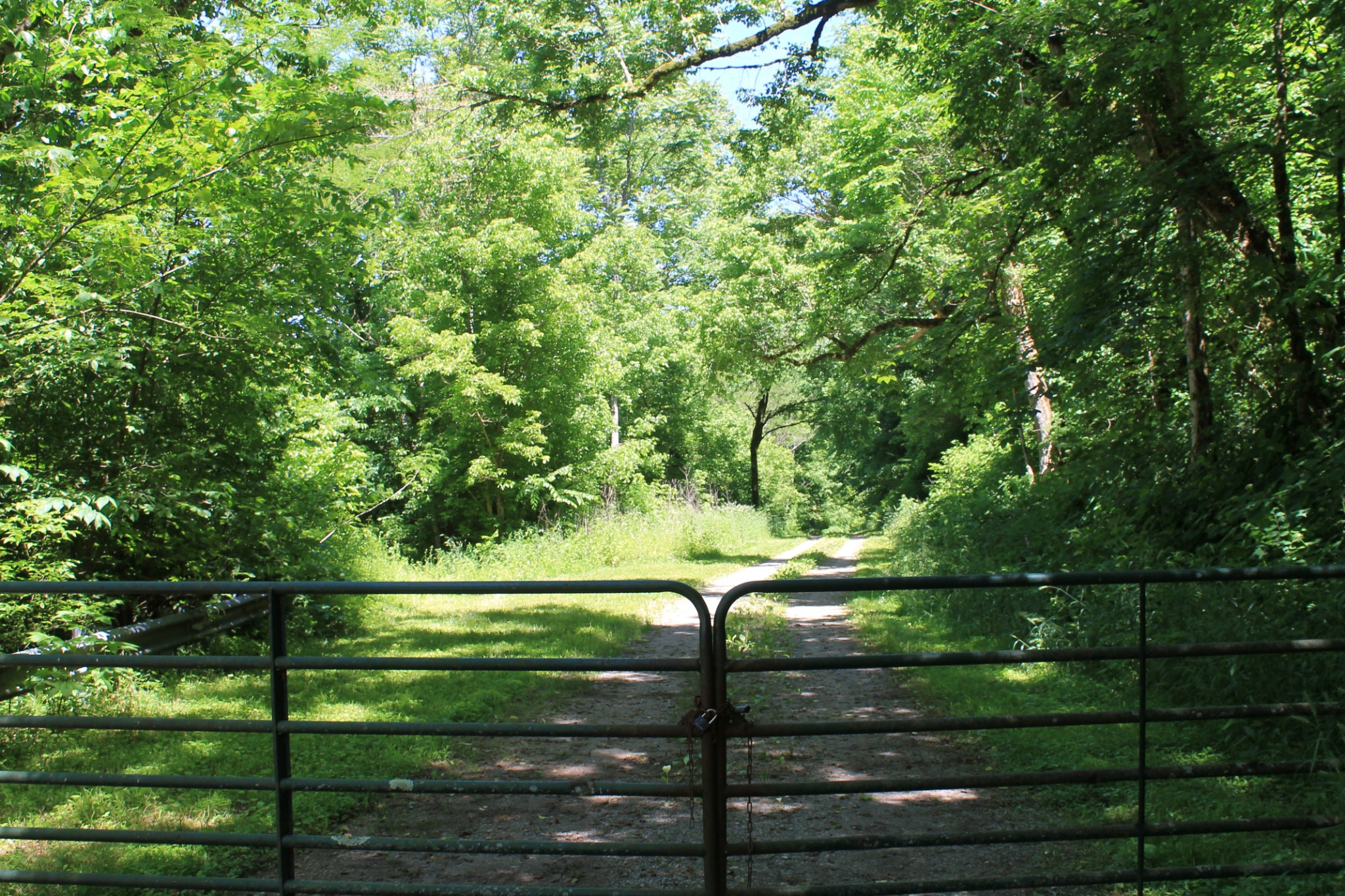 0 Shiloh Run Property Photo - Whitleyville, TN real estate listing