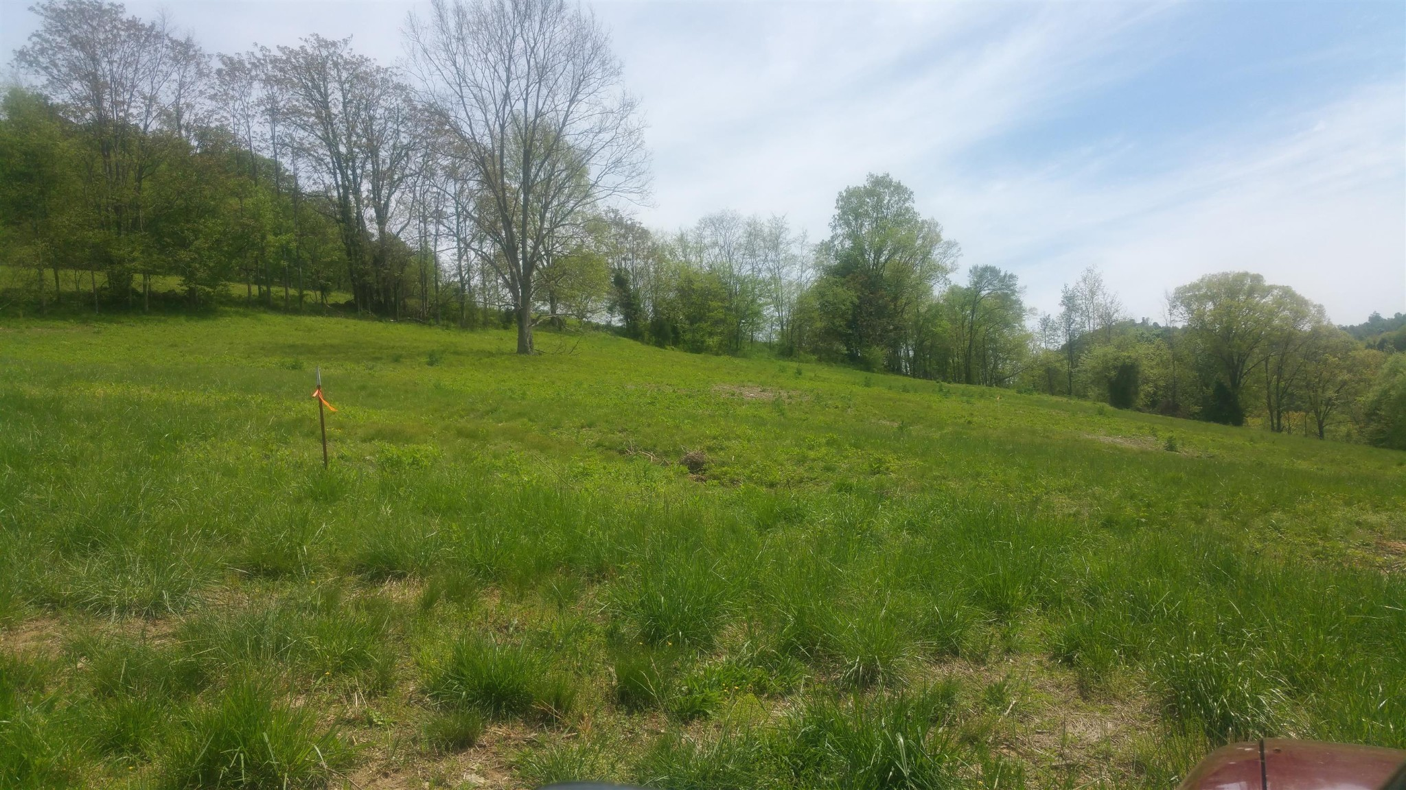 0 Maggart RD Property Photo - Chestnut Mound, TN real estate listing