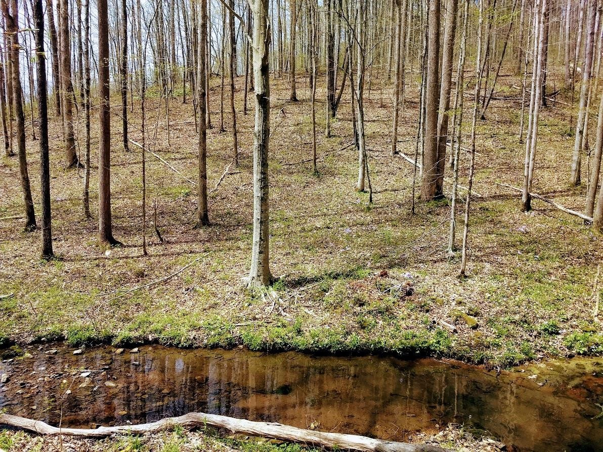 0 Barnhill Rd Property Photo - Primm Springs, TN real estate listing