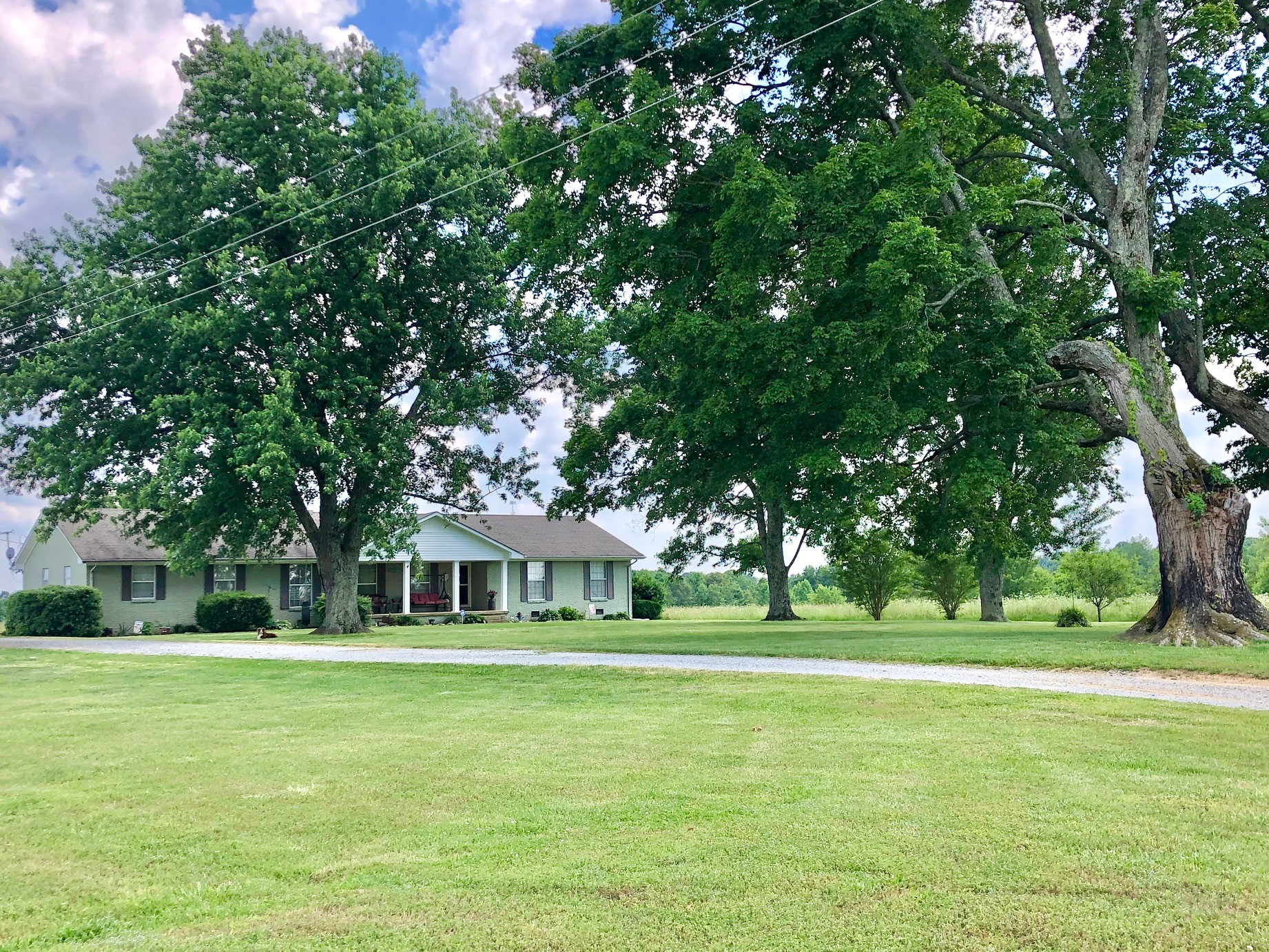 244 Old Jackson Hwy Property Photo - Loretto, TN real estate listing