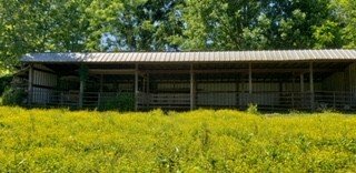 9899 Old Highway 52 Property Photo - Westmoreland, TN real estate listing