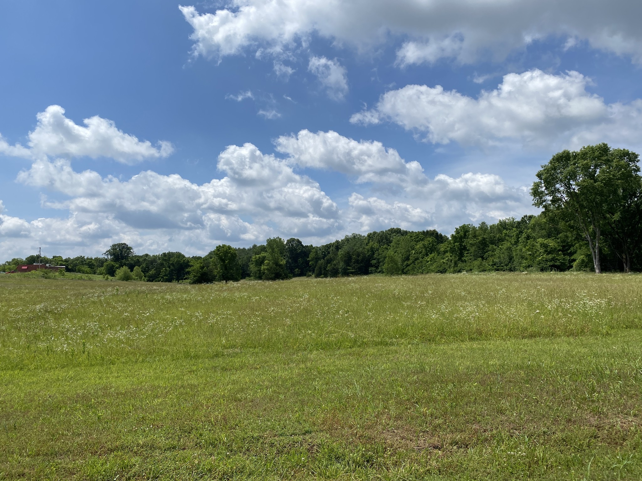 0 Highway 99 Property Photo - Chapel Hill, TN real estate listing
