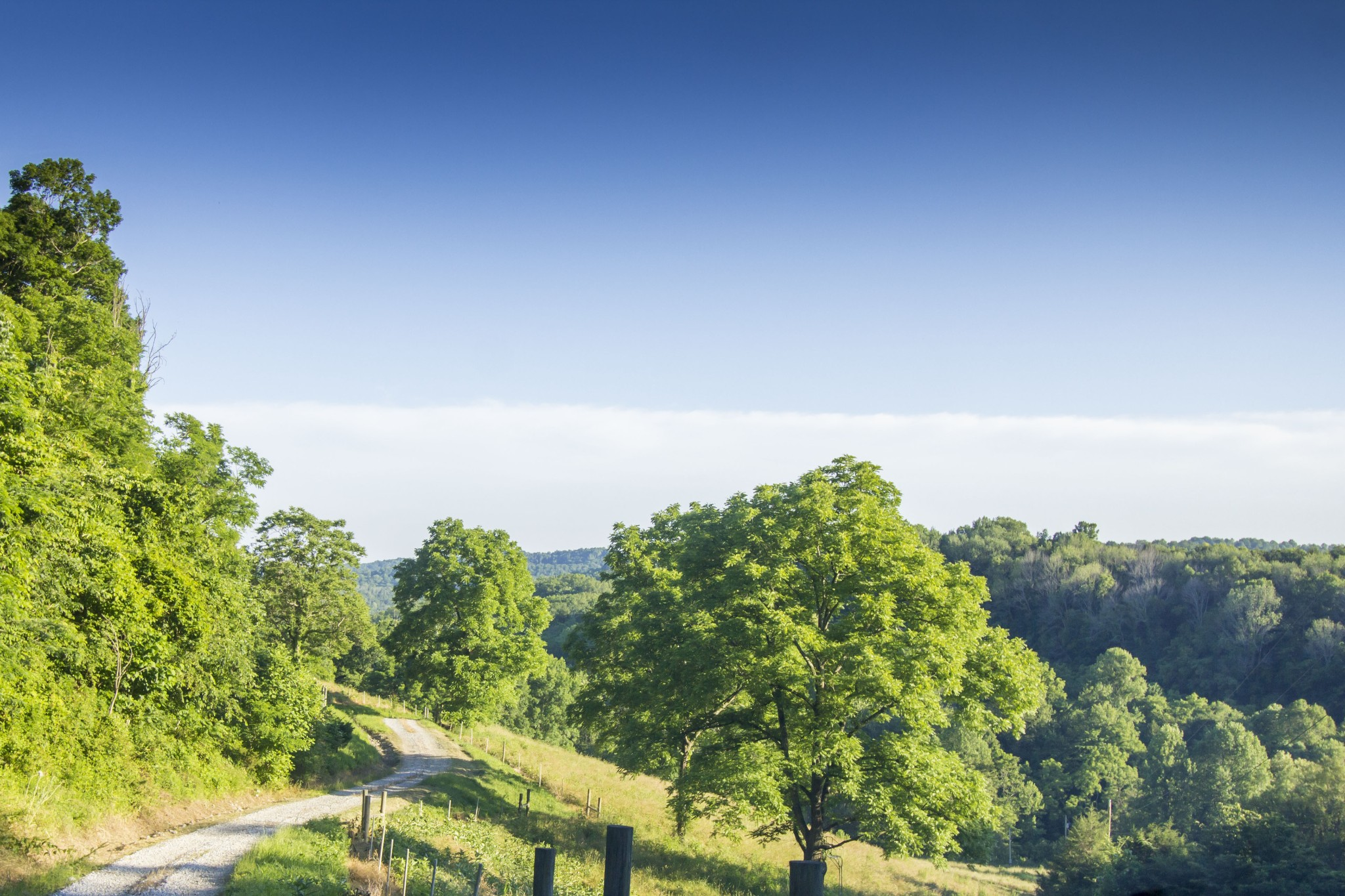 234 Friendship Hollow Rd, S Property Photo - Pleasant Shade, TN real estate listing