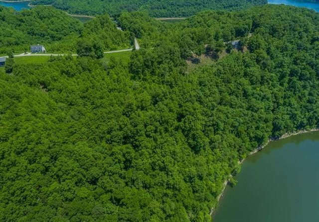 28 Opal Pt Property Photo - Smithville, TN real estate listing