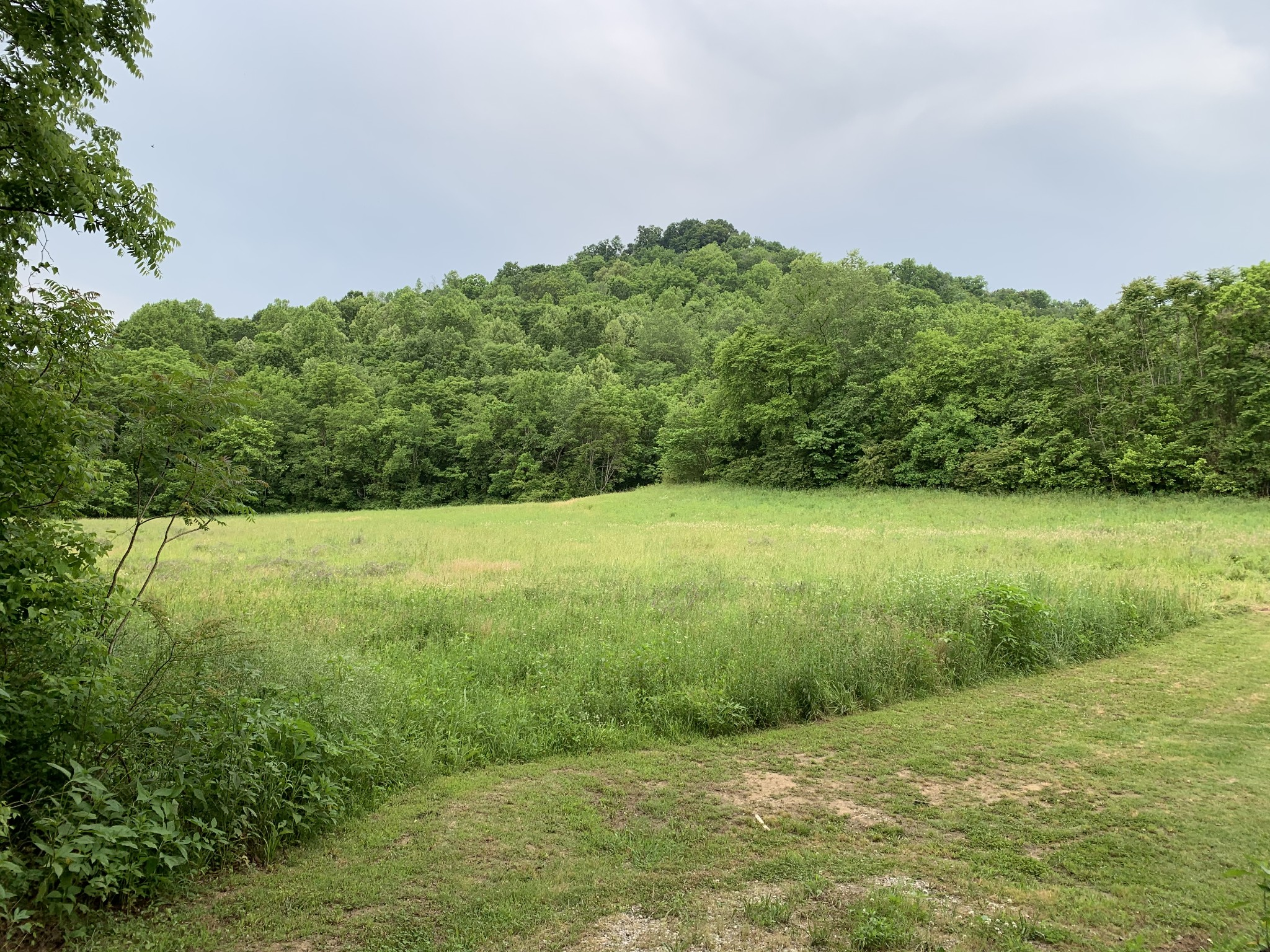 0 Givens Ln Property Photo - Pleasant Shade, TN real estate listing