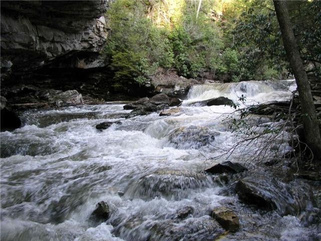 0 Savage Highland Dr Property Photo - Coalmont, TN real estate listing