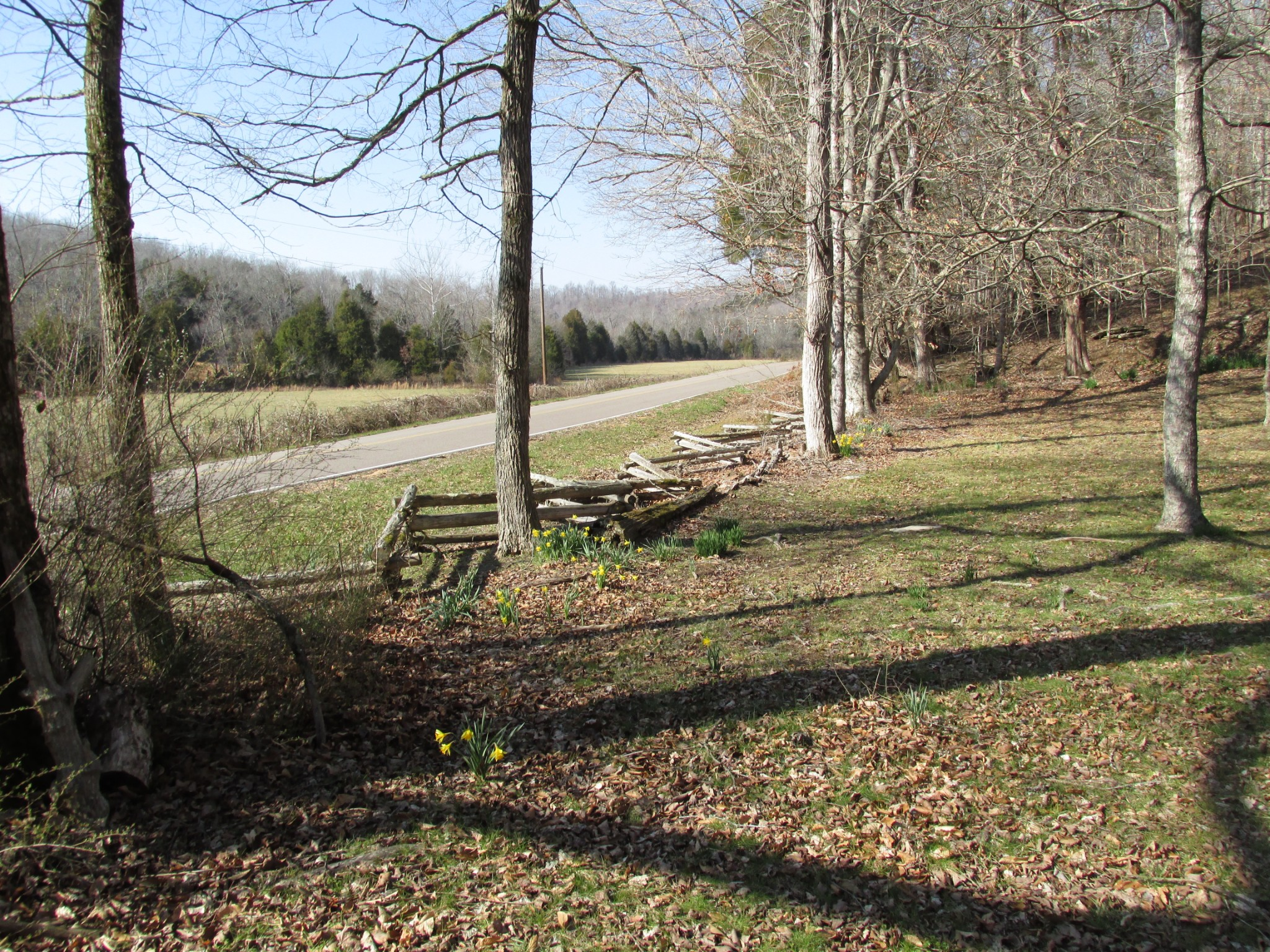 3519 Buck Fork Rd Property Photo - Linden, TN real estate listing