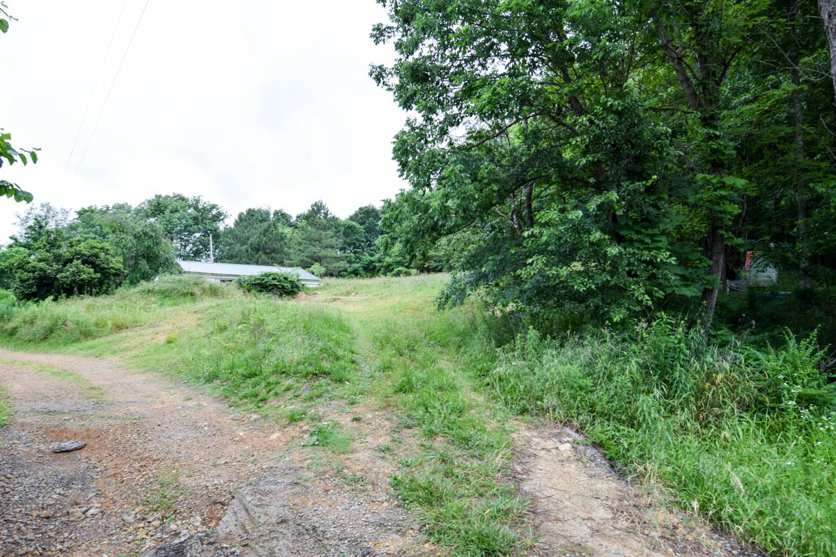425 Calvert Ridge Rd Property Photo - Westmoreland, TN real estate listing