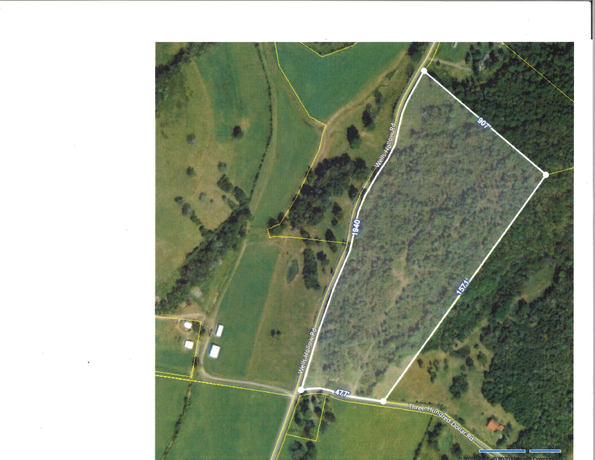 0 Wells Hollow Rd Property Photo - Petersburg, TN real estate listing