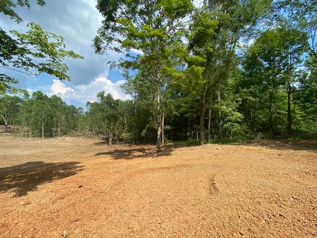 5B Soules Chapel Rd Property Photo - Cunningham, TN real estate listing