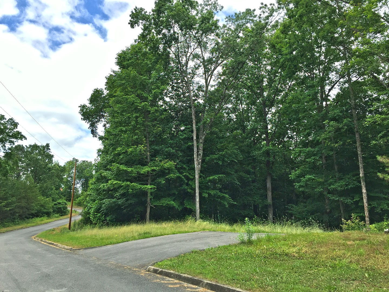 547 Turtle Dove Trl Property Photo - Dandridge, TN real estate listing