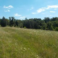 3151 OLD HIGHWAY 31E Property Photo - Westmoreland, TN real estate listing