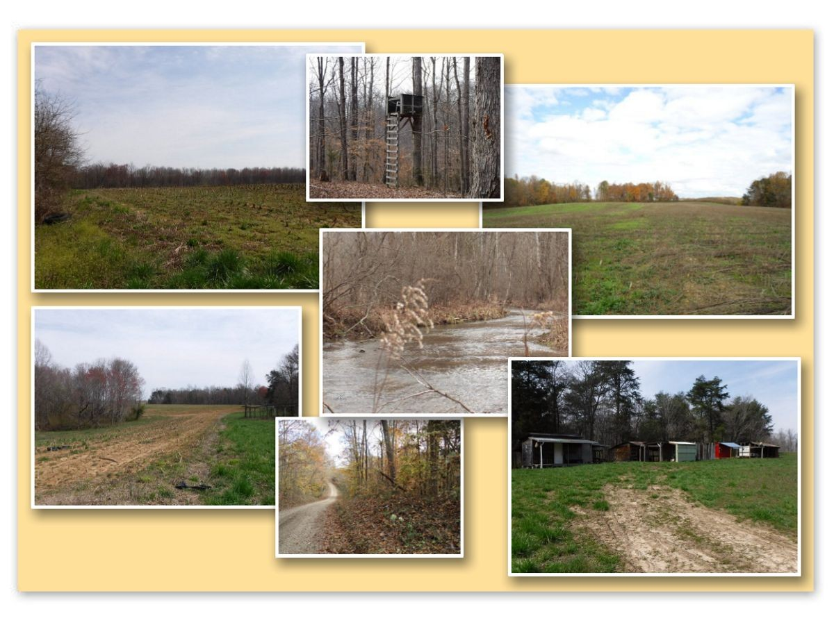 627 .50ac Barnes Road Property Photo - Whitleyville, TN real estate listing
