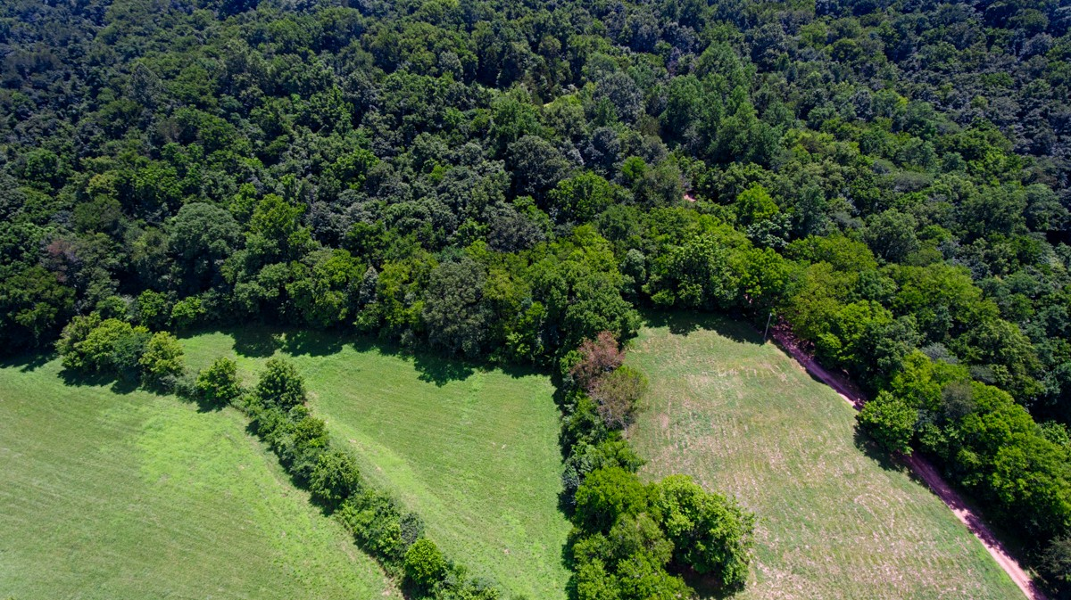 0 Hidden Hollow Road Property Photo - Dellrose, TN real estate listing