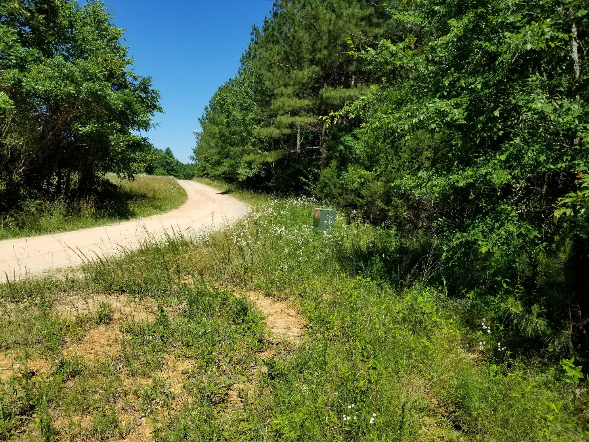 0 Hickory Trace Road Property Photo - Lyles, TN real estate listing