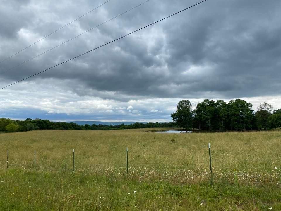 243 Bluebird Rd Property Photo - Palmer, TN real estate listing
