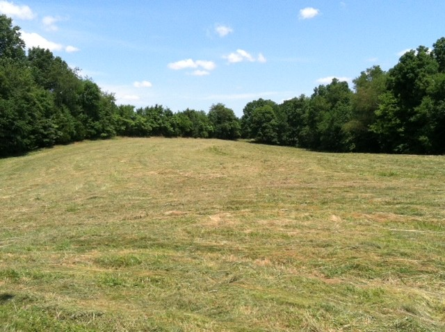 0 Pleasant Ridge Road Property Photo - Goodspring, TN real estate listing