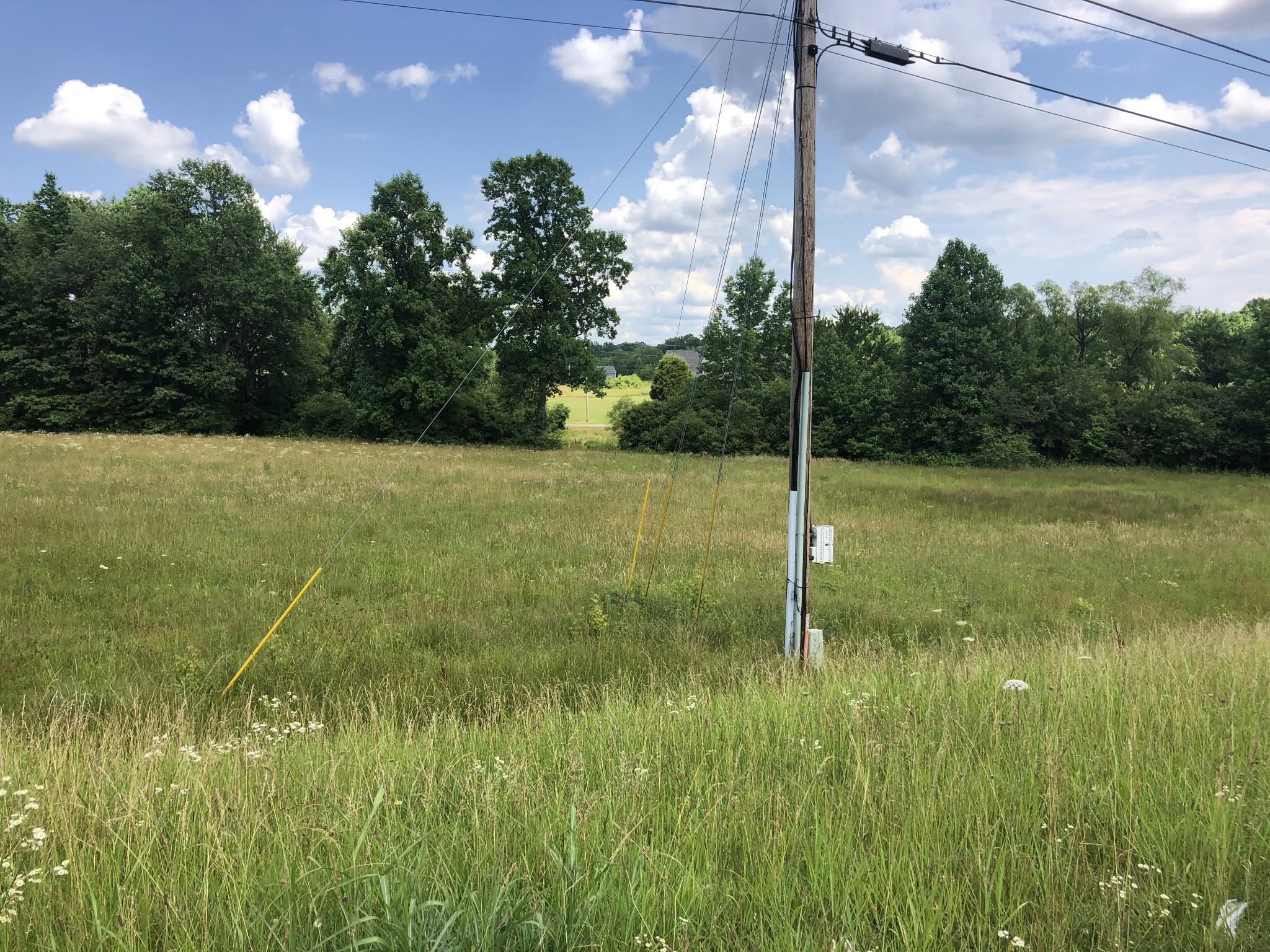 0 Hwy 43 N Property Photo - Summertown, TN real estate listing