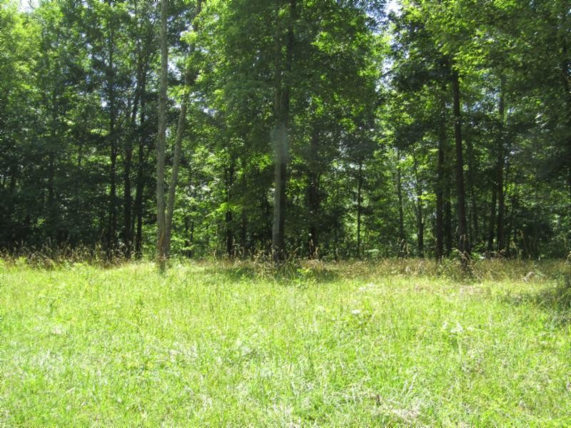 5 & 6 Western Way Property Photo - Hilham, TN real estate listing