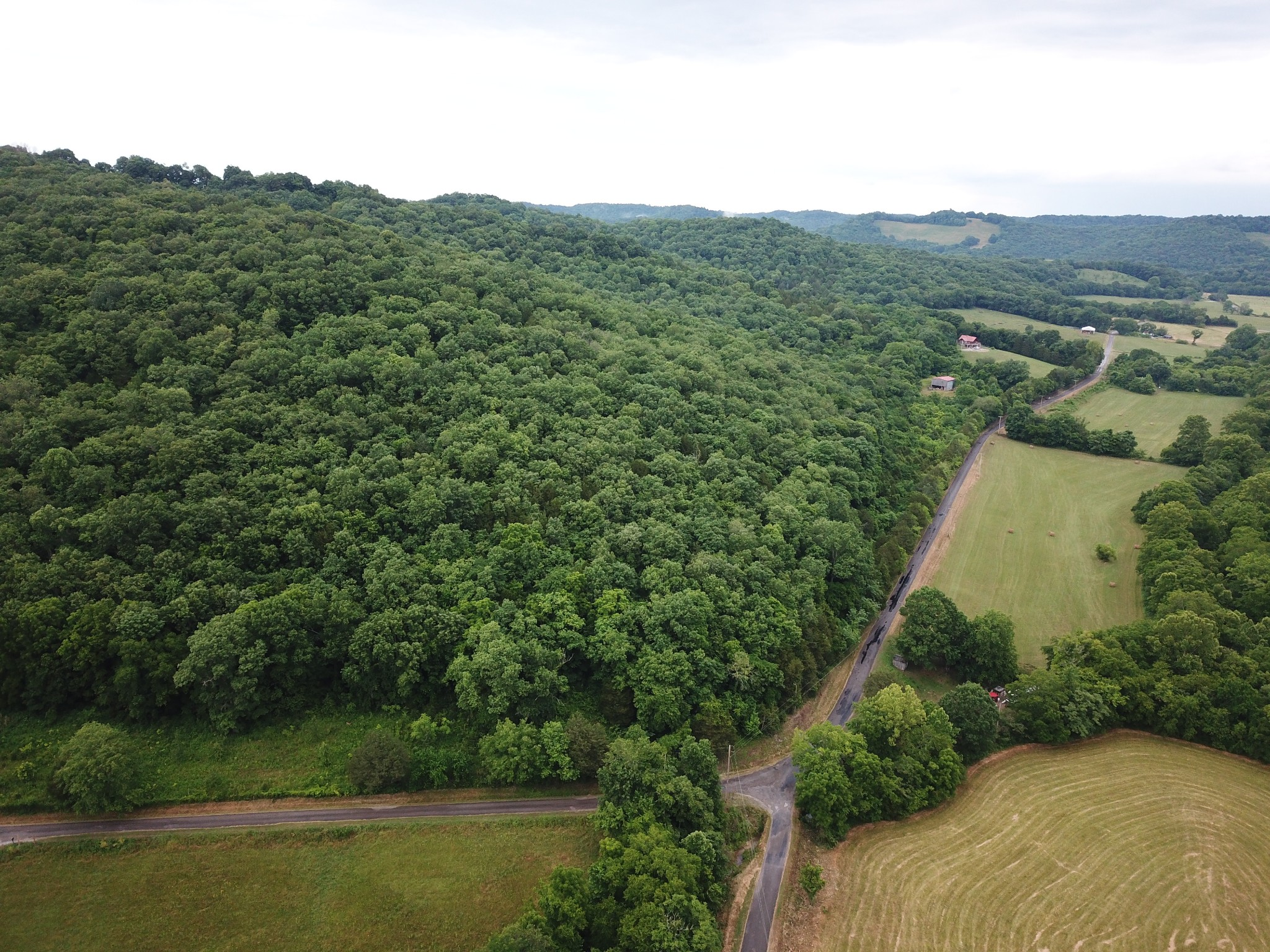 0 Alexandria to Dismal Road Property Photo - Liberty, TN real estate listing