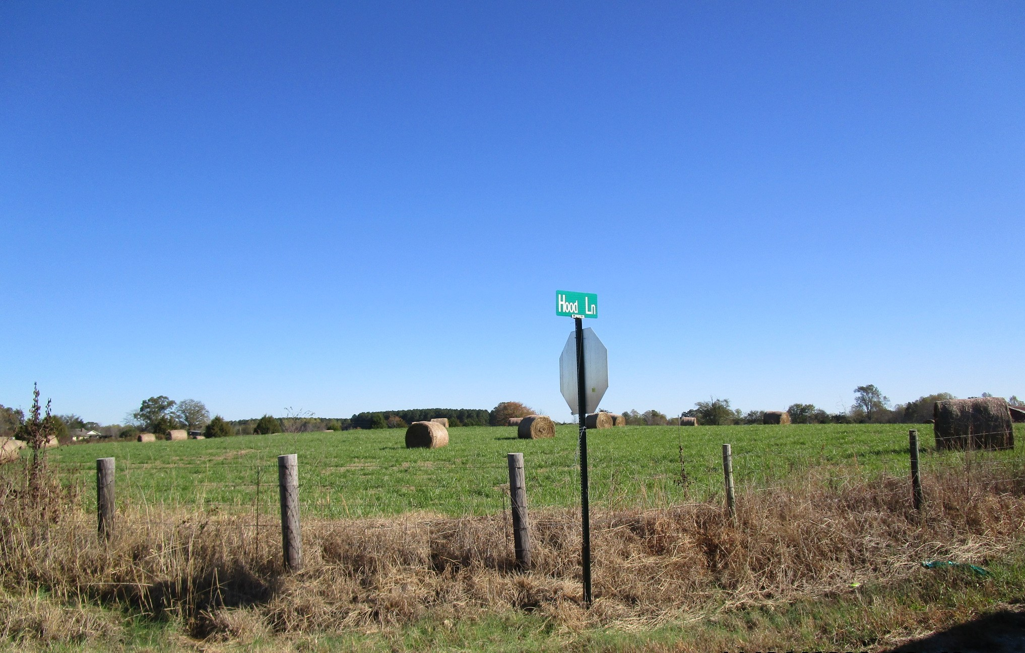 0 Rabbit Trail Road S Property Photo - Leoma, TN real estate listing