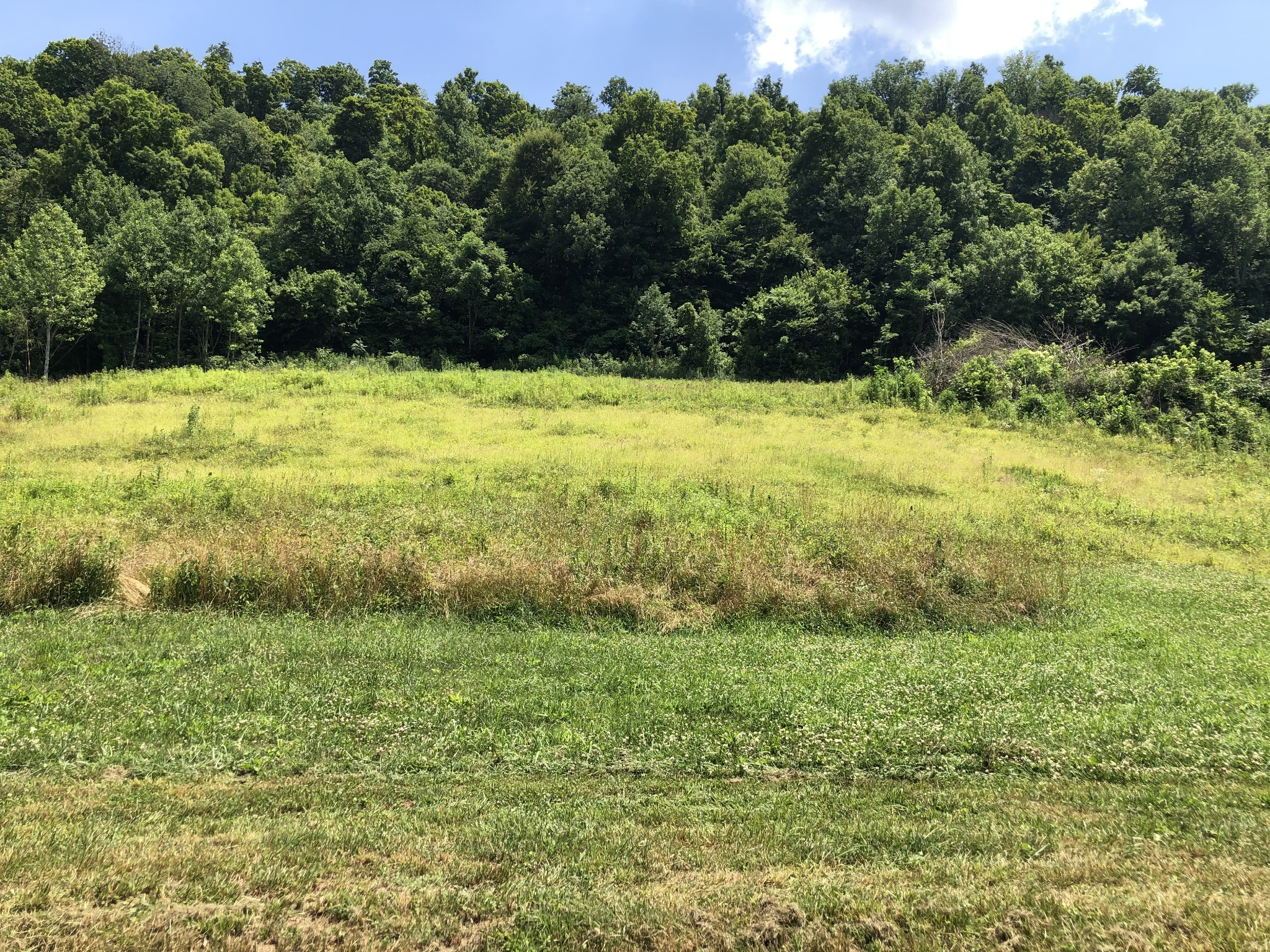0 Happy Hollow Ln Property Photo - Pleasant Shade, TN real estate listing