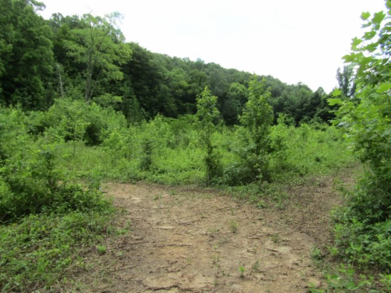 455 Shiloh Rd Property Photo - Crawford, TN real estate listing