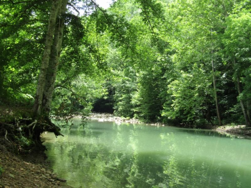 21 Shiloh Rd Property Photo - Crawford, TN real estate listing