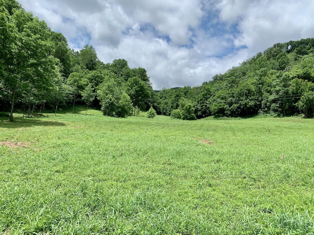 245 Big Creek Road Property Photo - Pleasant Shade, TN real estate listing