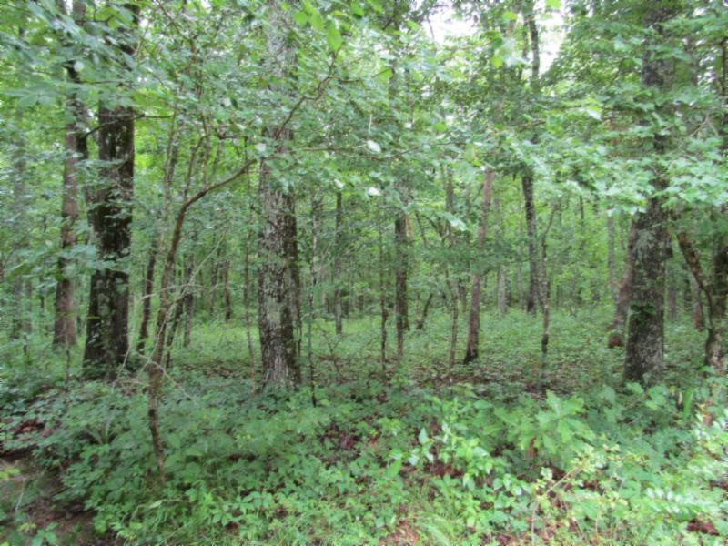362 Sunset Rd Property Photo - Crossville, TN real estate listing