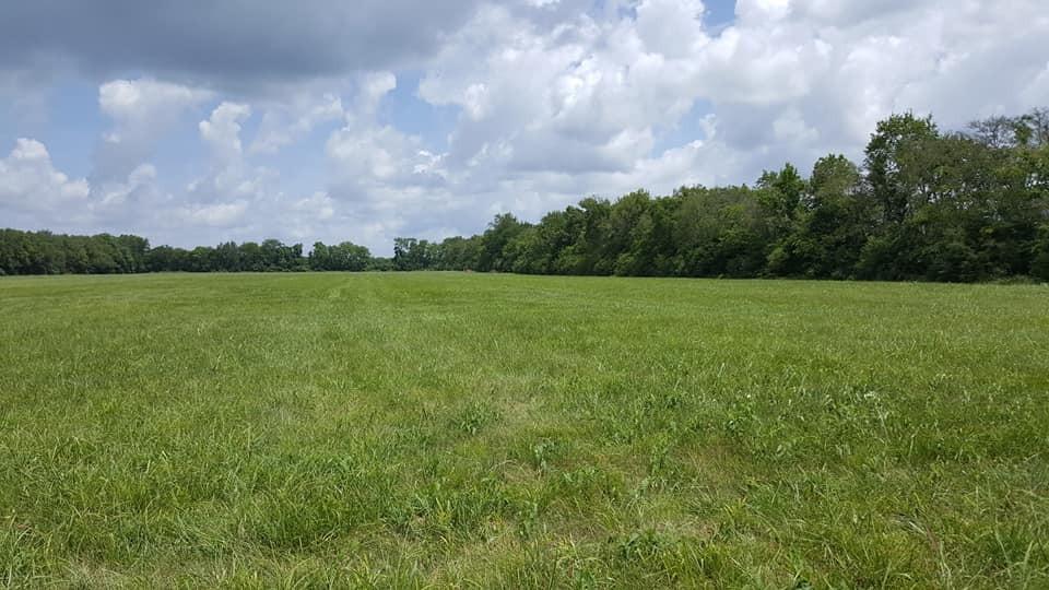 1 Little Rock Rd Property Photo - Eagleville, TN real estate listing