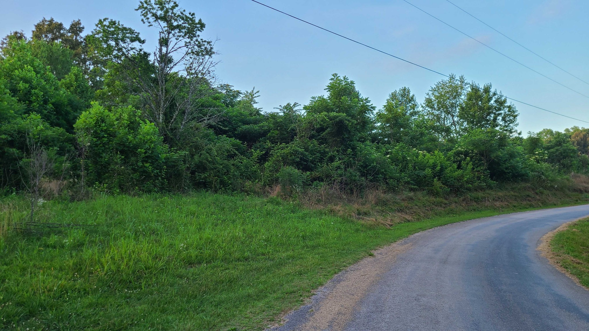 3931 Parchcorn Hollow Rd Property Photo
