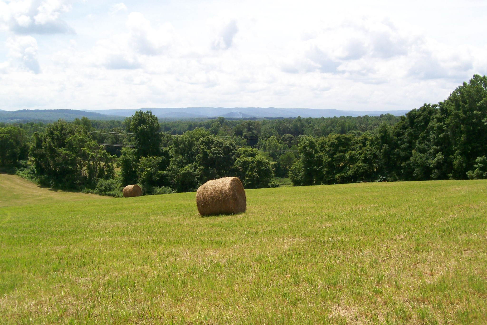 400 Webbs Camp Road Property Photo - Walling, TN real estate listing