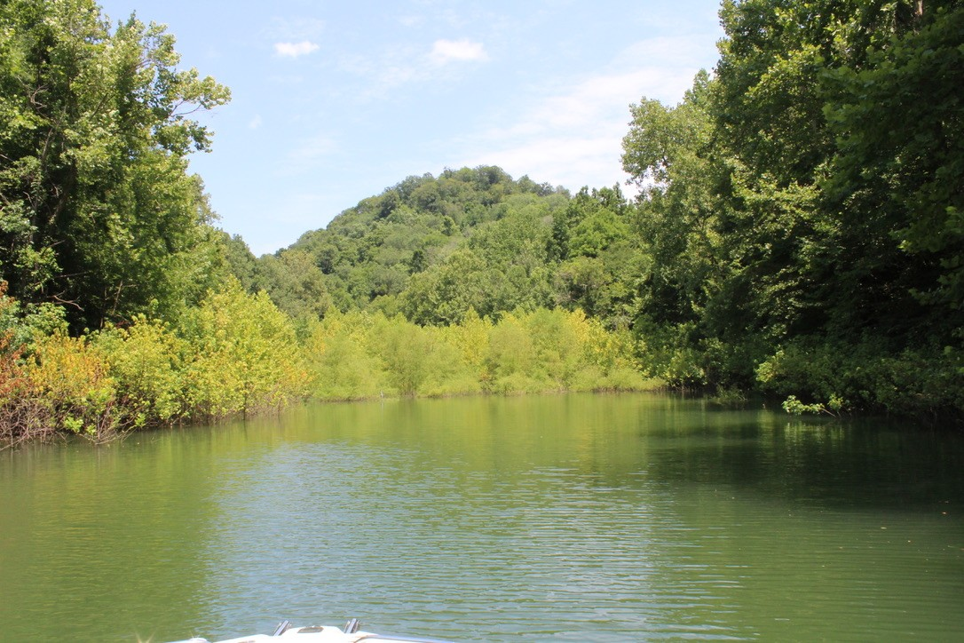 8065 Clemons Ridge Road Property Photo - Silver Point, TN real estate listing