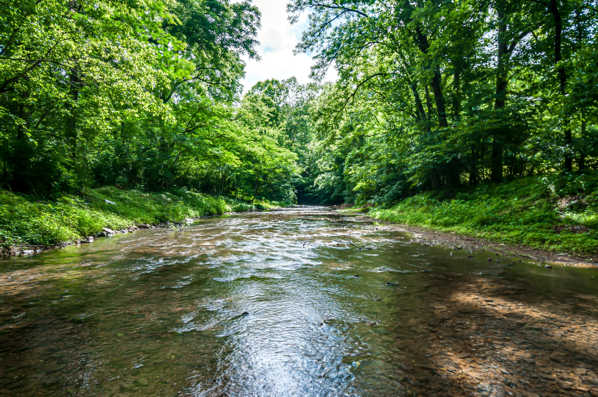 7399 Caney Fork Rd Property Photo - Fairview, TN real estate listing