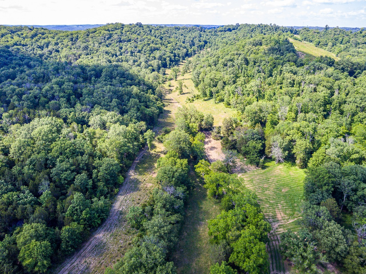 2241 Louse Creek Rd Property Photo - Mulberry, TN real estate listing