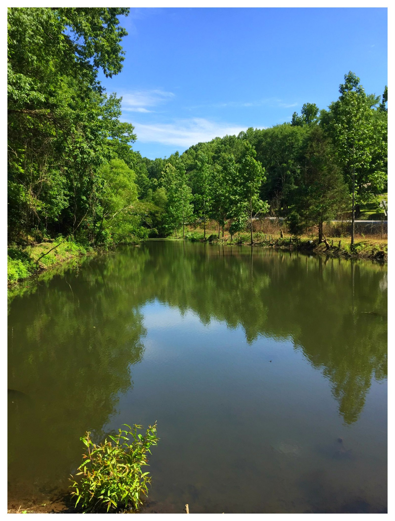 1146 Highway 70 Property Photo - Kingston Springs, TN real estate listing