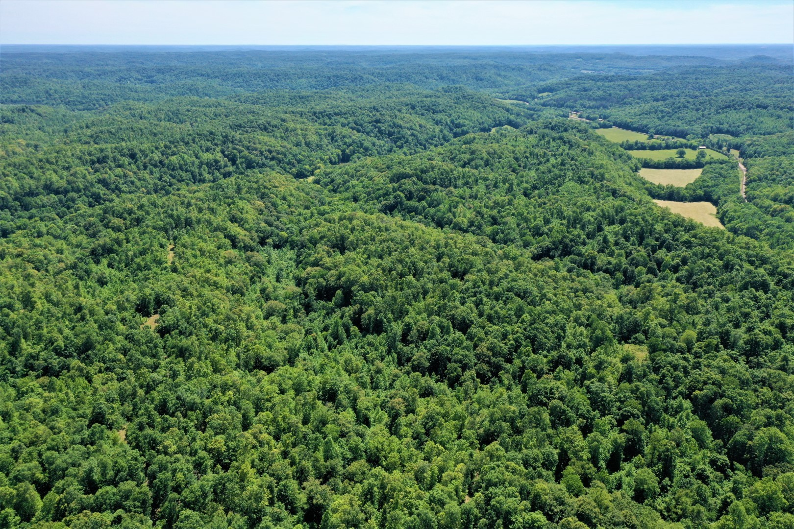 0 Hwy 13 South Property Photo - Linden, TN real estate listing