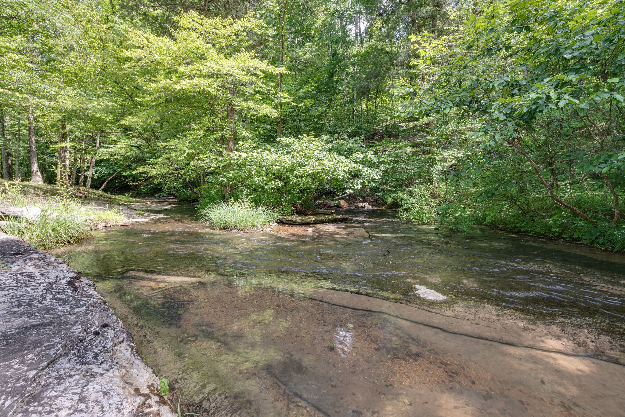 181 Tracy Rd Property Photo - Hohenwald, TN real estate listing