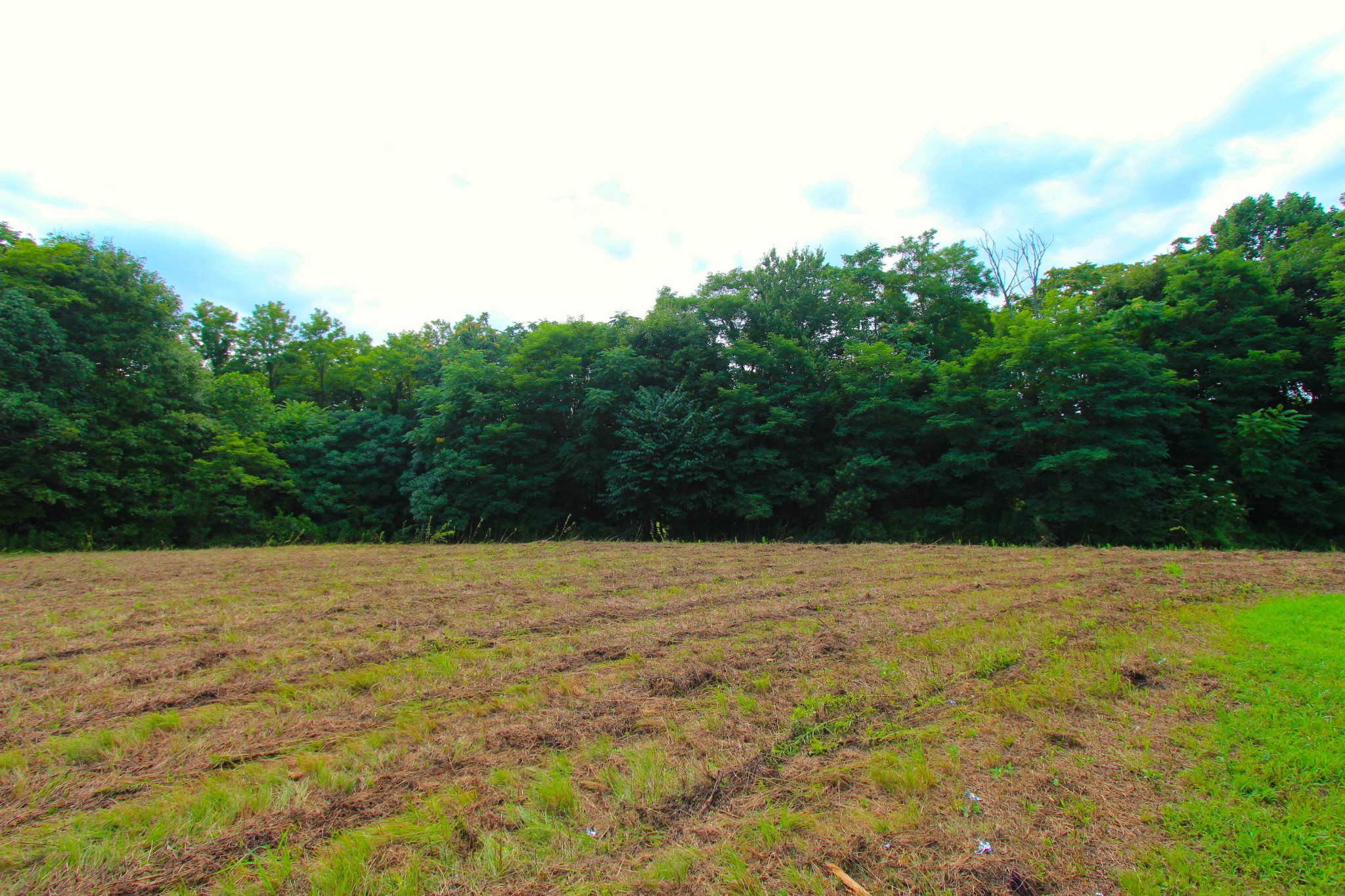 0 Jones Hollow Rd Property Photo - Westmoreland, TN real estate listing