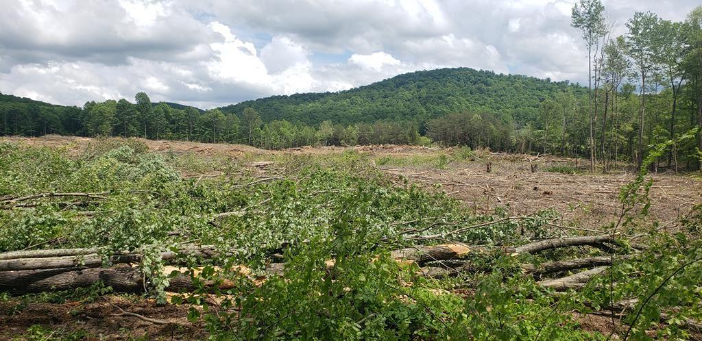 0 Highland Mountain Property Photo - Livingston, TN real estate listing