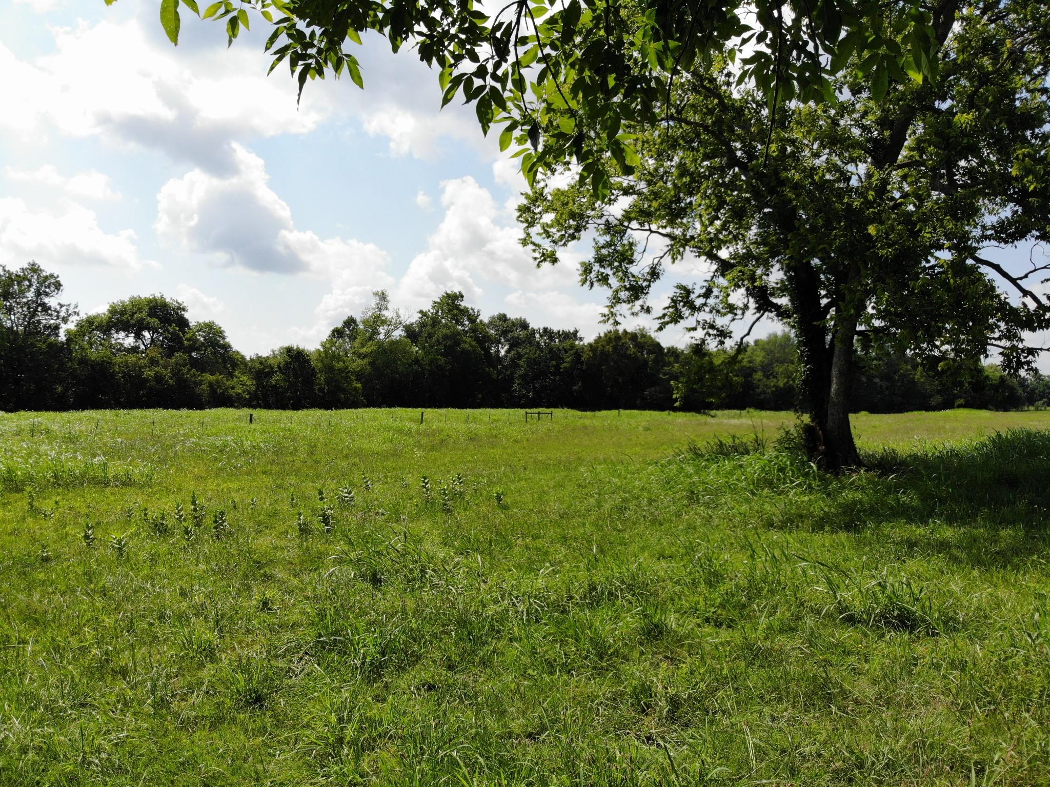 3550 Gray Ln Property Photo - Thompsons Station, TN real estate listing