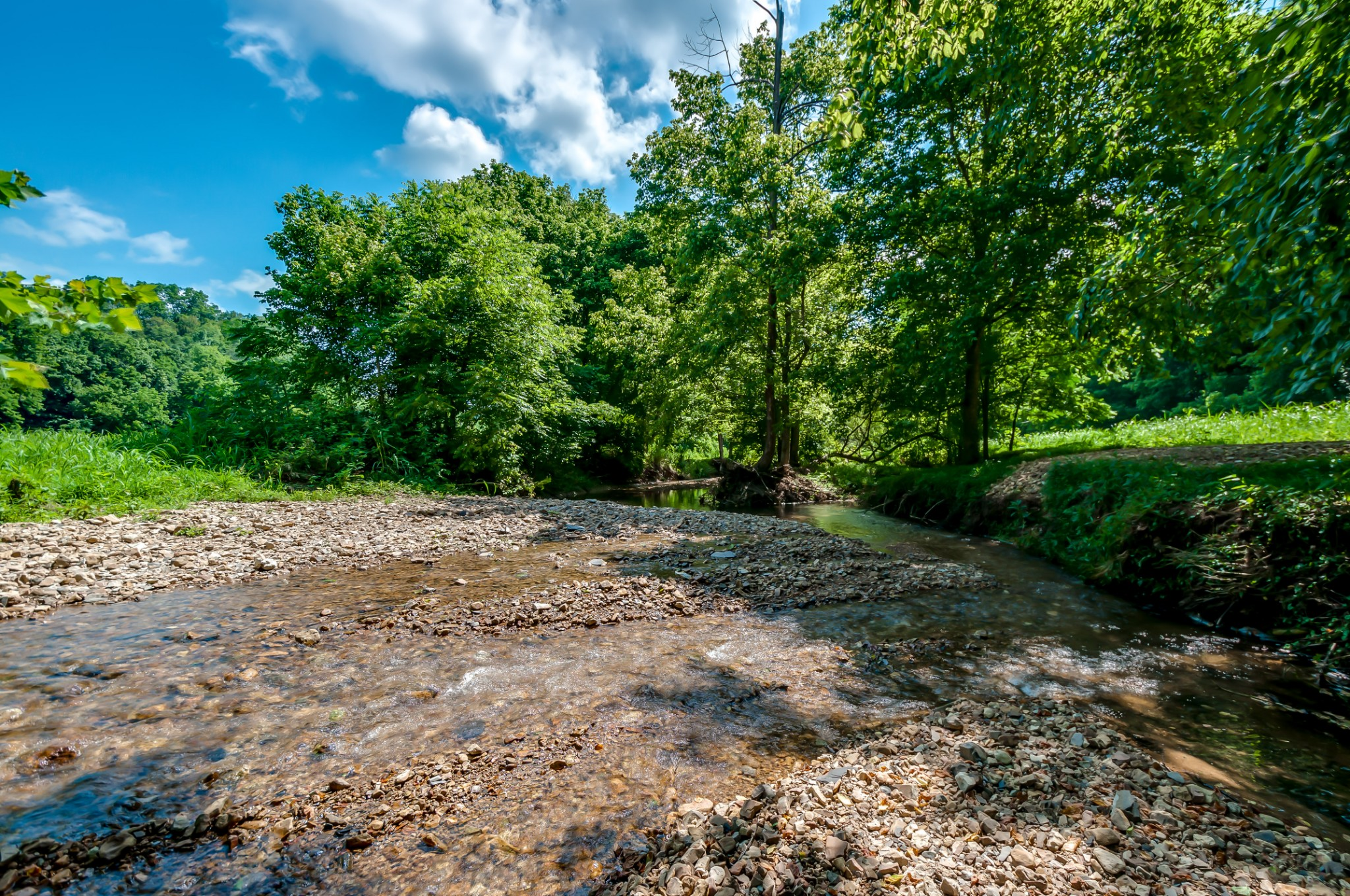 7379 Caney Fork Rd Property Photo - Fairview, TN real estate listing