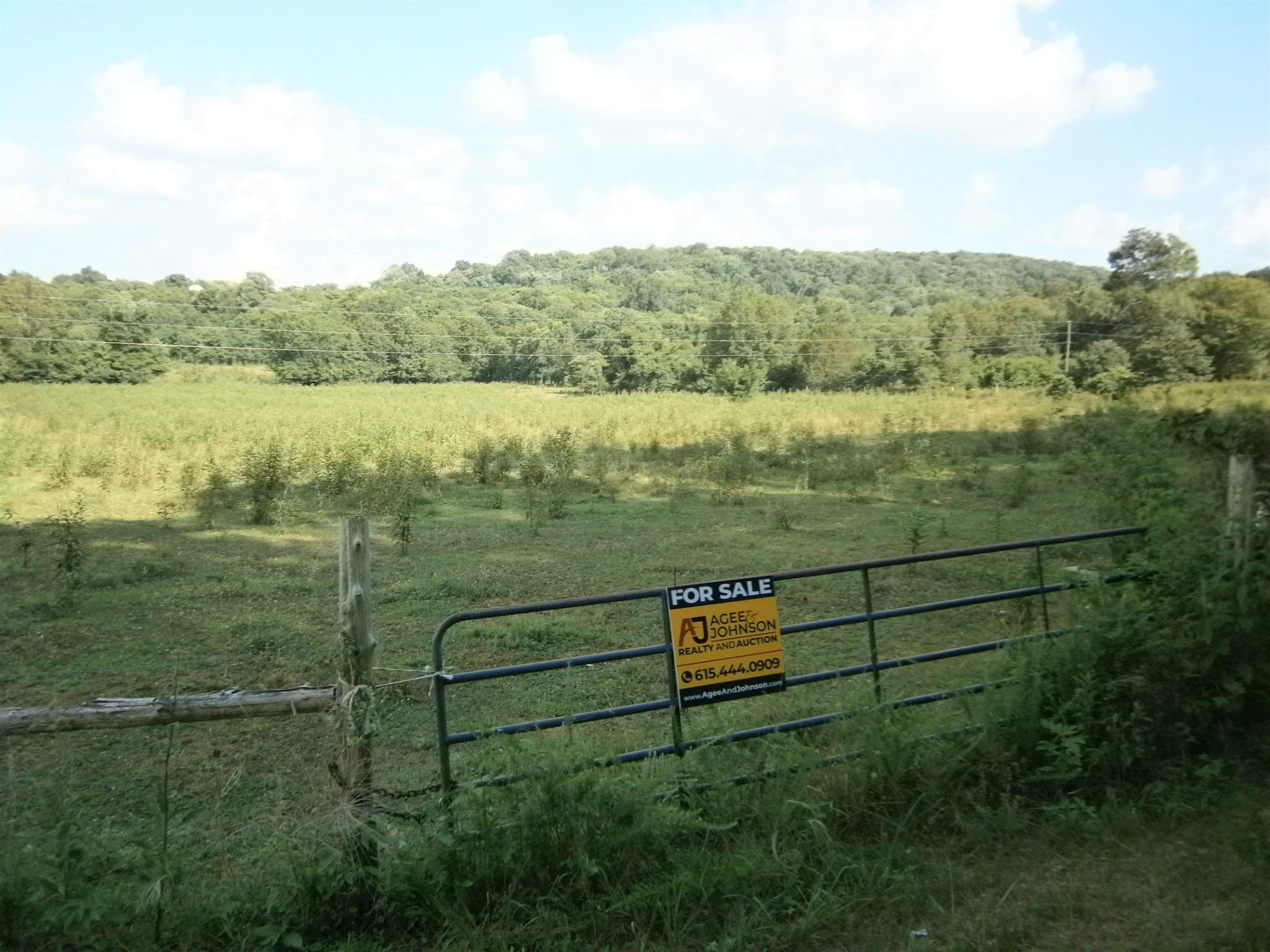 0 Holmes Gap Rd Property Photo - Watertown, TN real estate listing