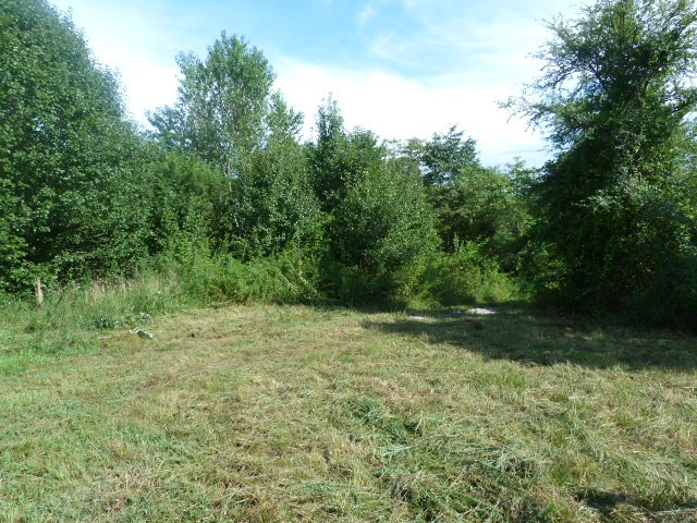 0 Old Seminary Rd Property Photo - Manchester, TN real estate listing