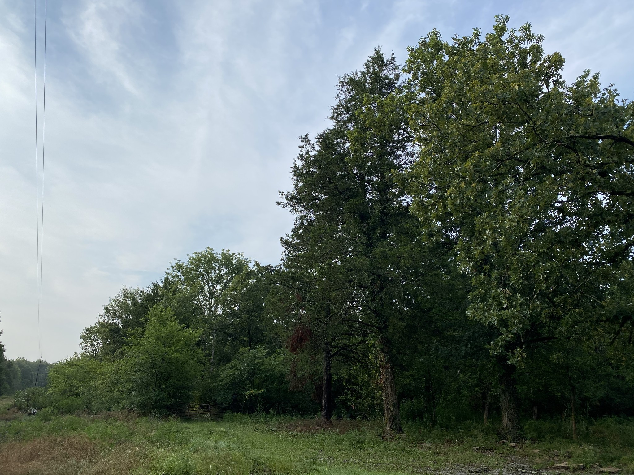 2 Mount Herman Rd Property Photo - Murfreesboro, TN real estate listing