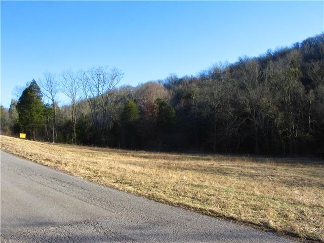 0 Spankem Rd Property Photo - Lynchburg, TN real estate listing