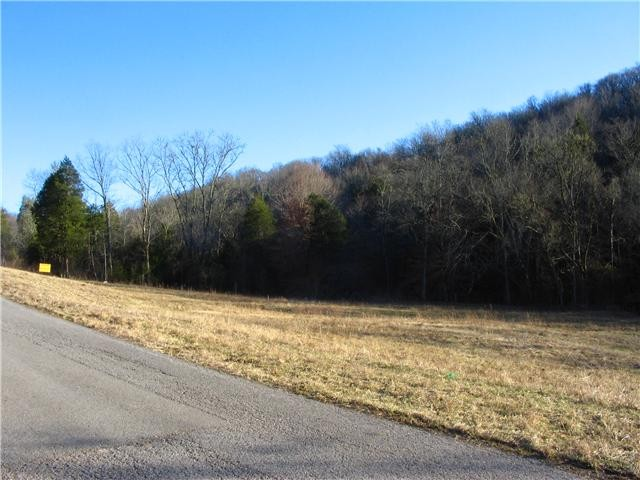 0 Spankem Rd Property Photo - Lynchburg, TN real estate listing